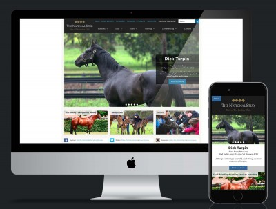 Jockey Club - National Stud Website Redesign